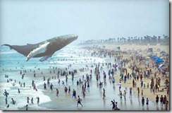 magic-leap-whale